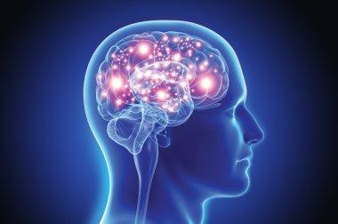 Atención especializada para afecciones neurológicas complejas.